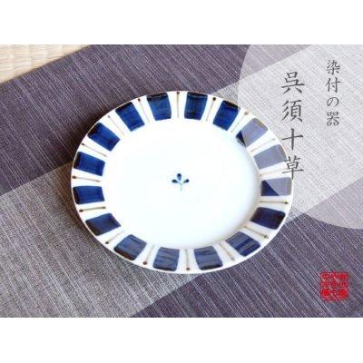 [Made in Japan] Gosu tokusa Medium plate