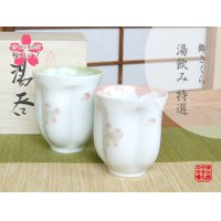 Mai Sakura (Green & Pink /pair) Japanese green tea cup / SAKURA type(wooden box)