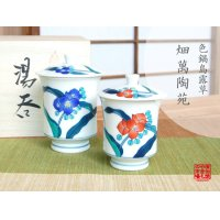 Ironabeshima Tsuyukusa (pair) Japanese green tea cup (wooden box)