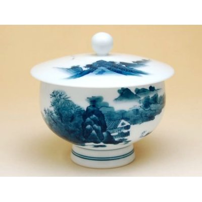 Photo3: Nabeshima sansui landscape Tea set (5 cups & 1 pot)