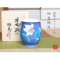 Ruri Casablanca Japanese green tea cup (wooden box)