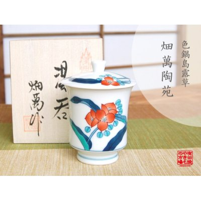 [Made in Japan] Iro nabeshima Tsuyukusa (Small) Japanese green tea cup
