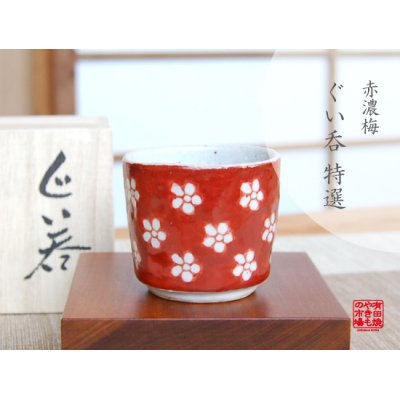 [Made in Japan] Akadami ume SAKE cup