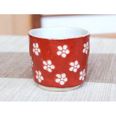 Photo2: Akadami ume SAKE cup (wood box)