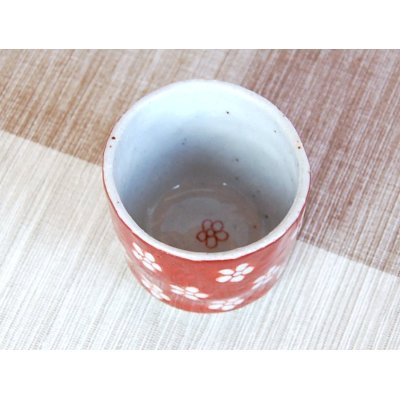 Photo3: Akadami ume SAKE cup (wood box)