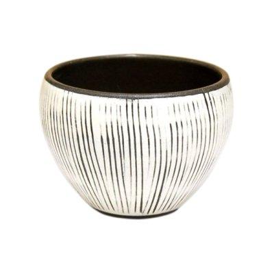 [Made in Japan] Senbori Japanese green tea cup